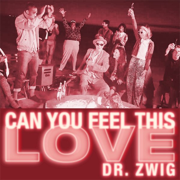 """Dr. Zwig """"Can You Feel This Love"""""""